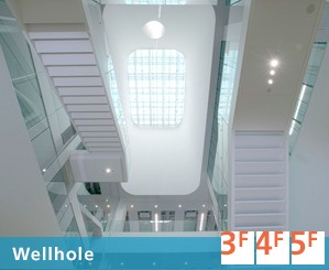 DMEA-Daikin Innovation-Facility overview - Wellhole.jpg